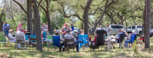Shade trees along the blanco river create a pleasant atmosphere for a spring picnic