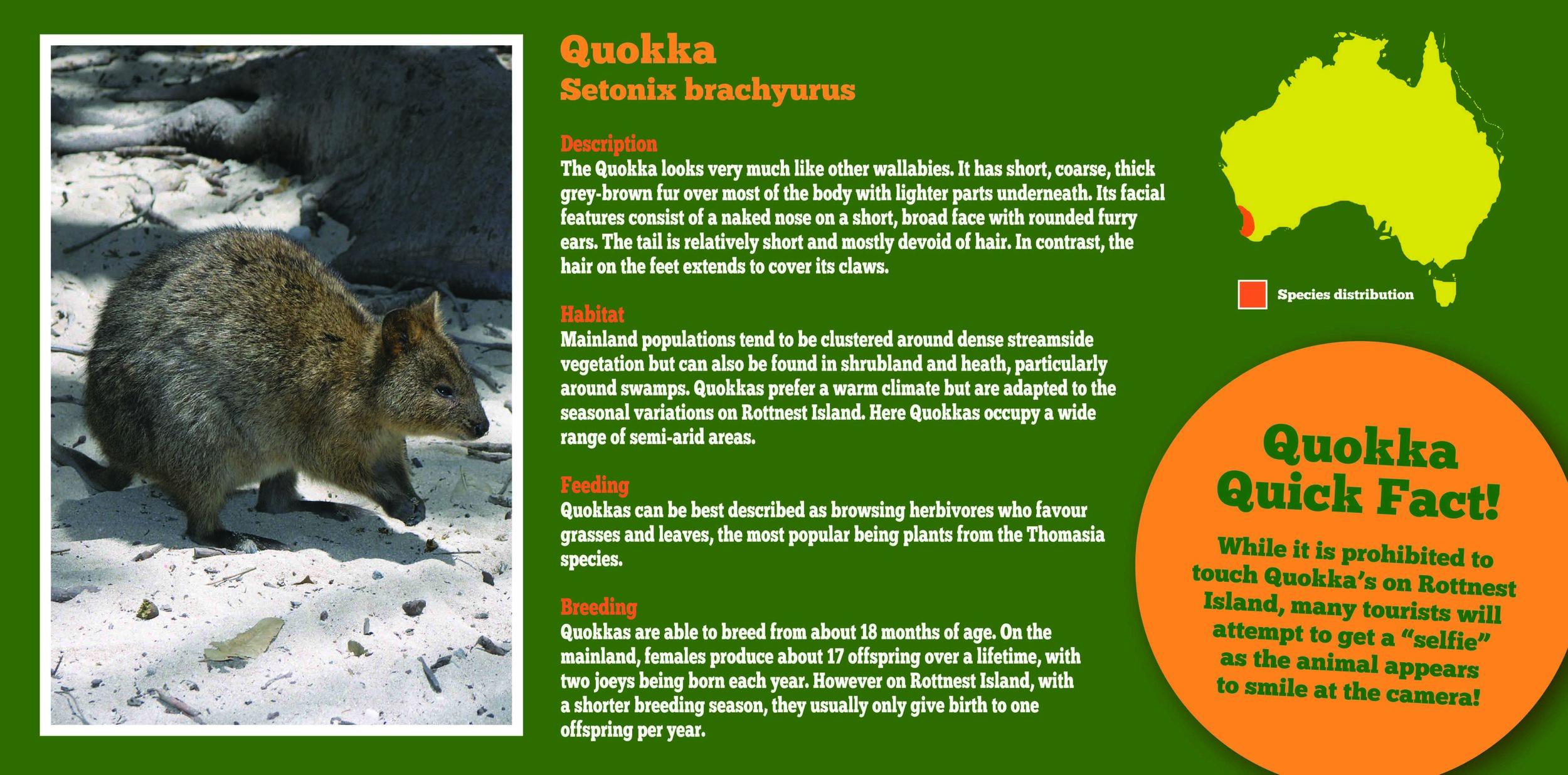 bunbury wildlife park | branding, print materials and signage