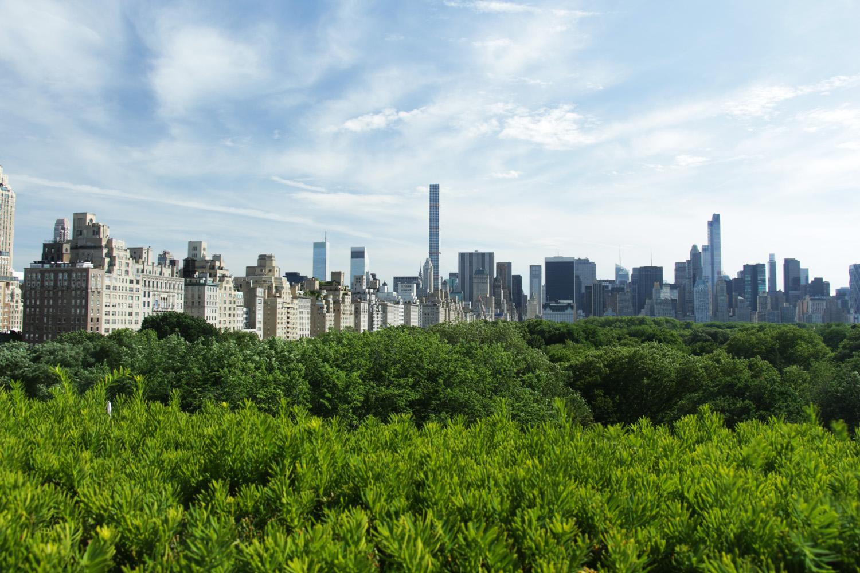view-the-met-new-york.jpg