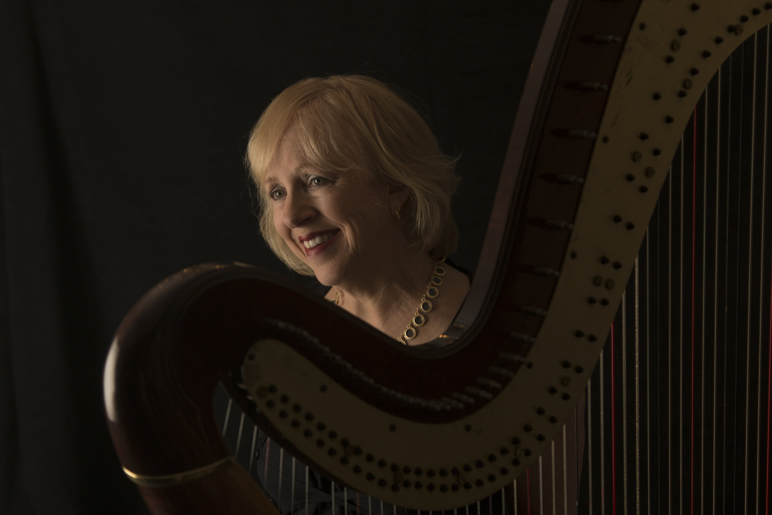 MLA Women in Music Blog Feature: Anne LeBaron - Terrific overview of my work just published with text + photos, by Renee McBride, for Music Library Association Women in Music Blog