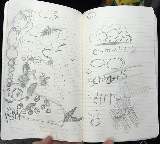 Henry's doodles on the way to Monterey ☁️🐋☀️