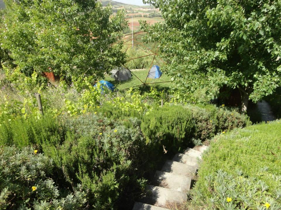 tendas2.jpg