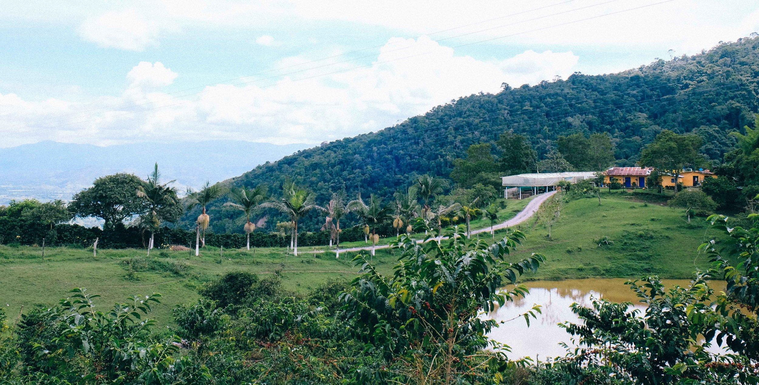 Road to El Mirador.