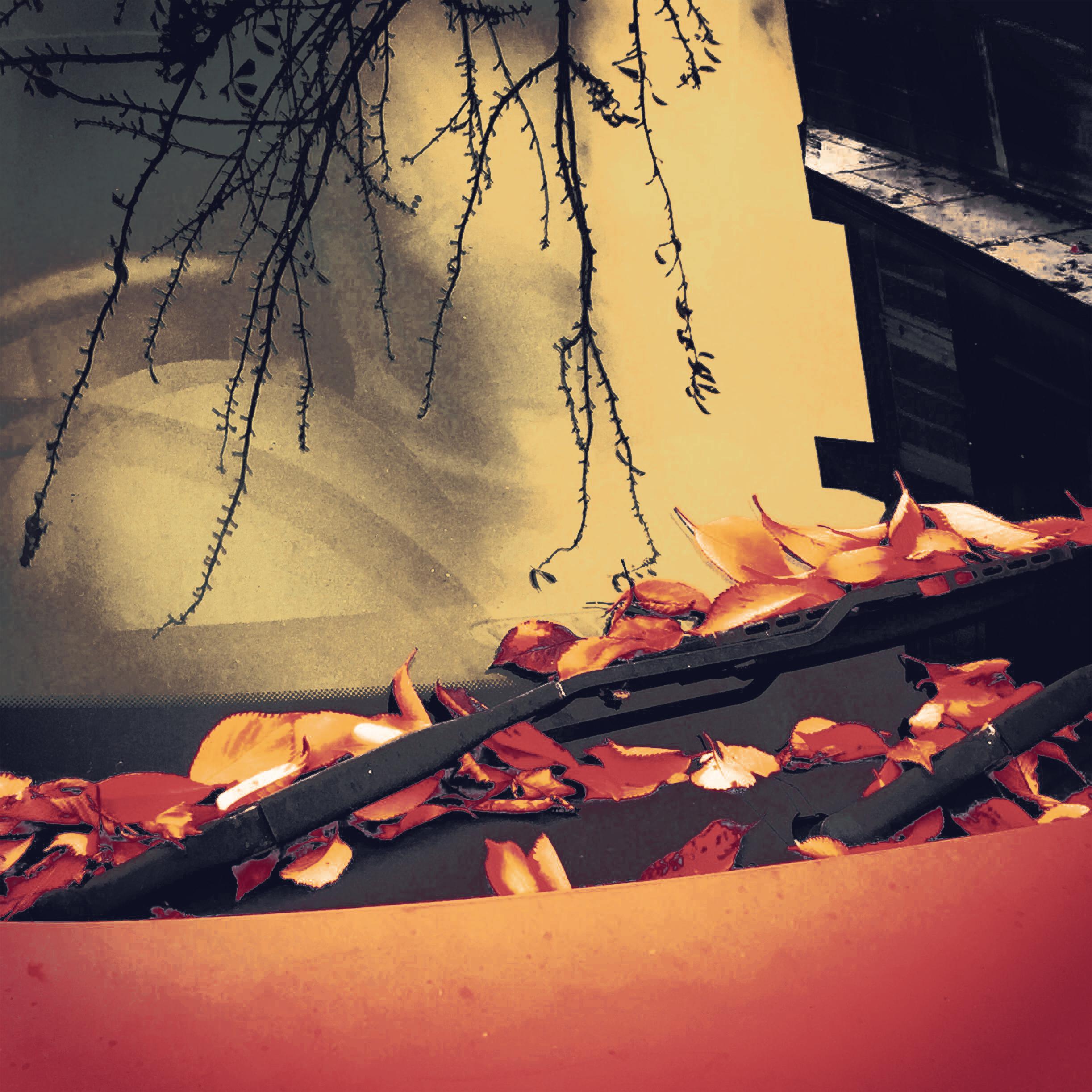 Autumn-A3Square.jpg
