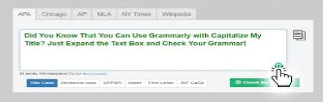 title capitalisation tool screenshot.PNG