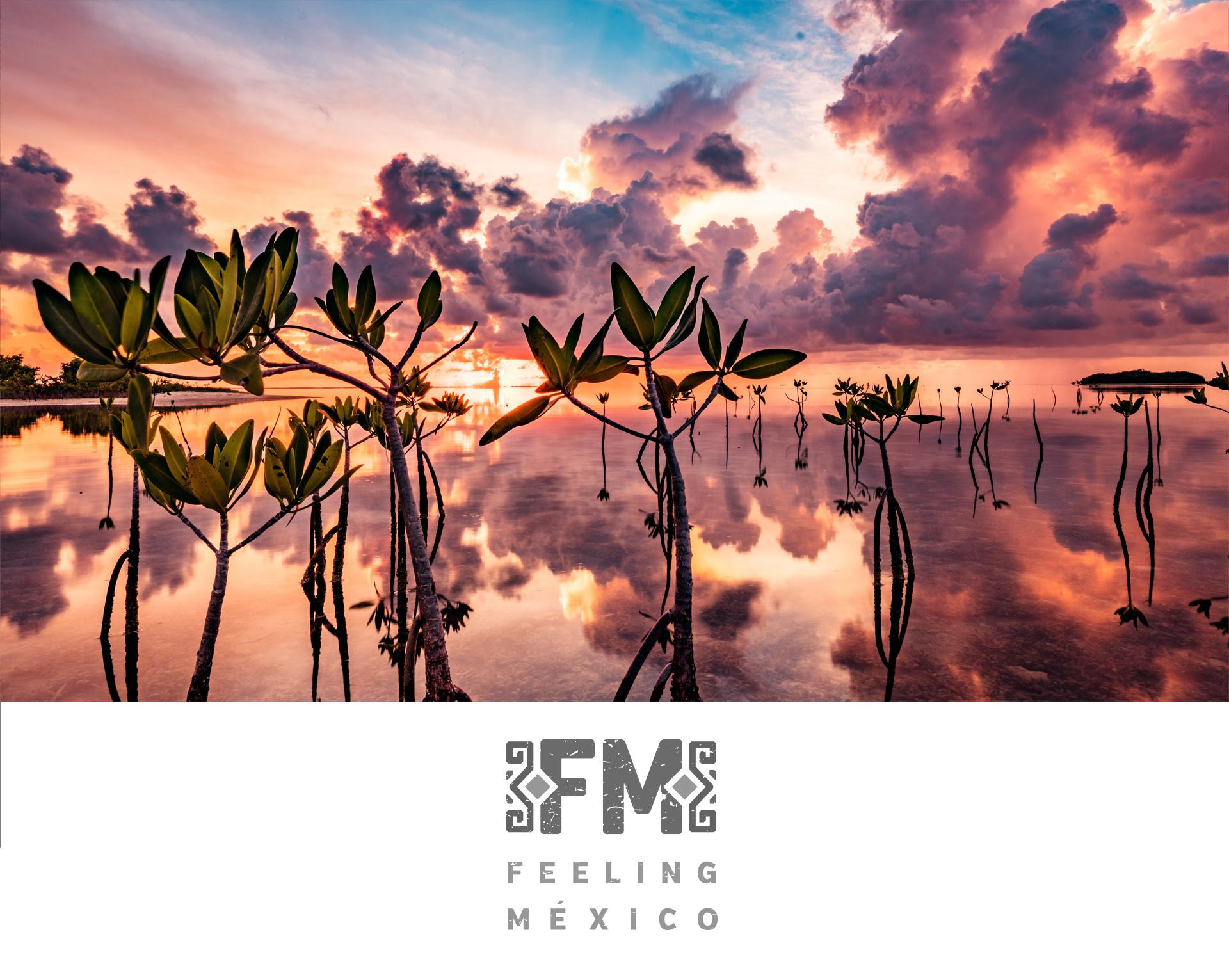 FeelingMexico.jpg