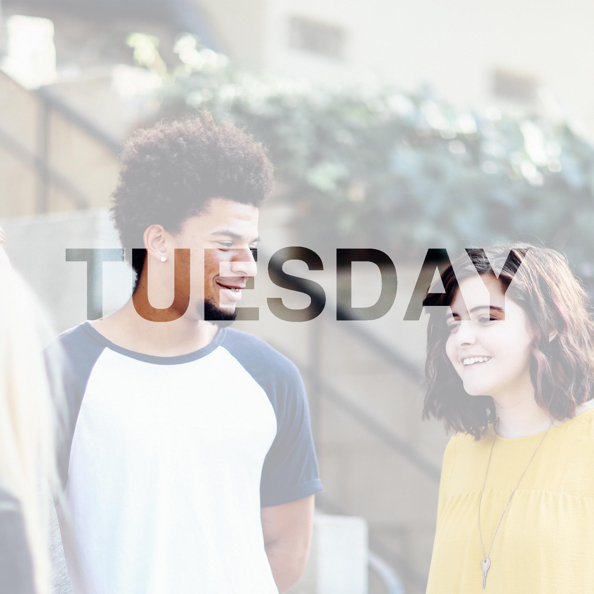 02_Tuesday.jpg