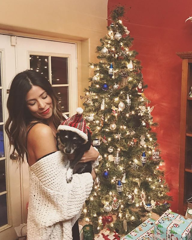 Merry Christmas and happy holidays from Oreo and I 🎄🎄🎄