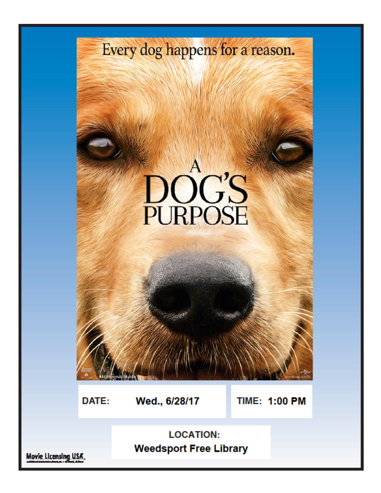 dogs purpose 0617.jpg