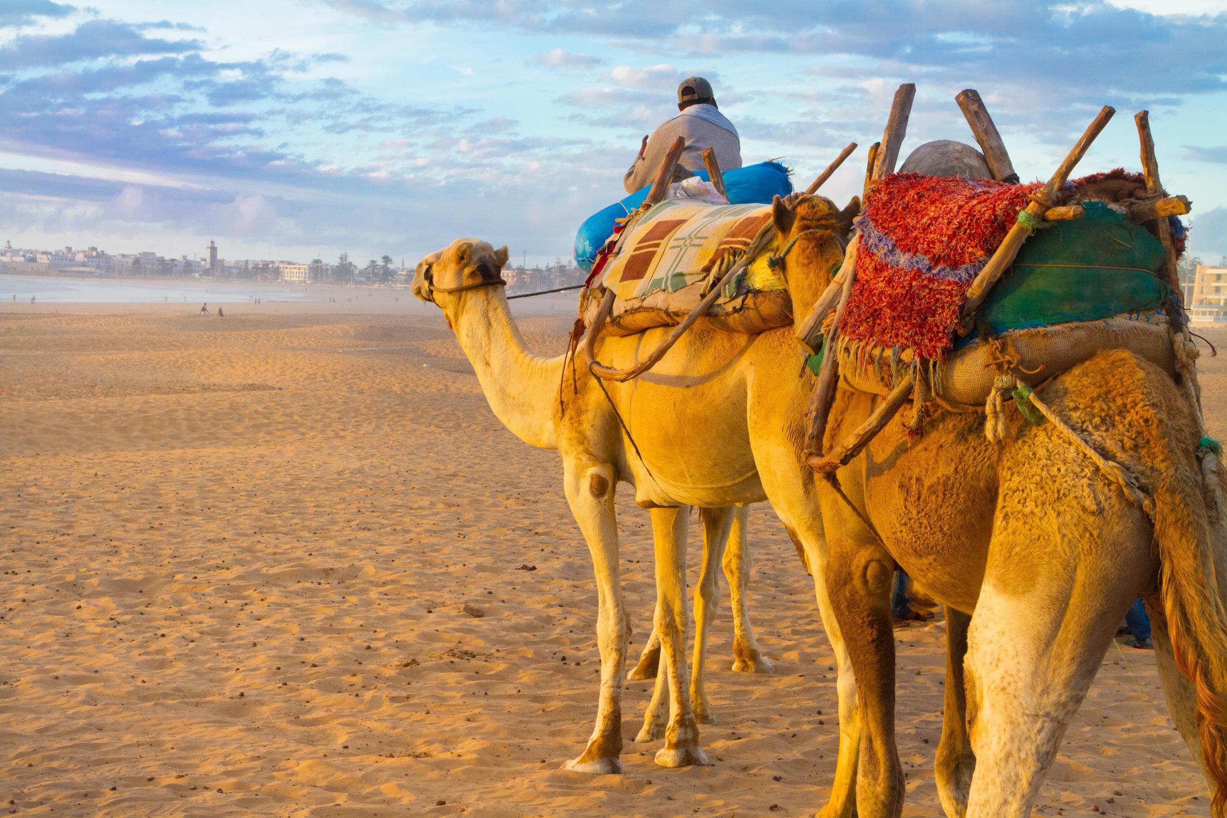 Moroccotourism.jpeg