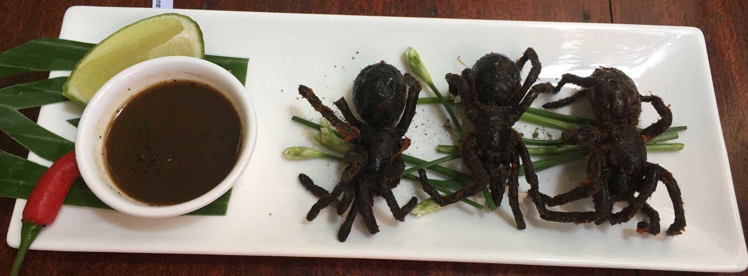 CambodiaRestGKelly_tarantulas.jpg