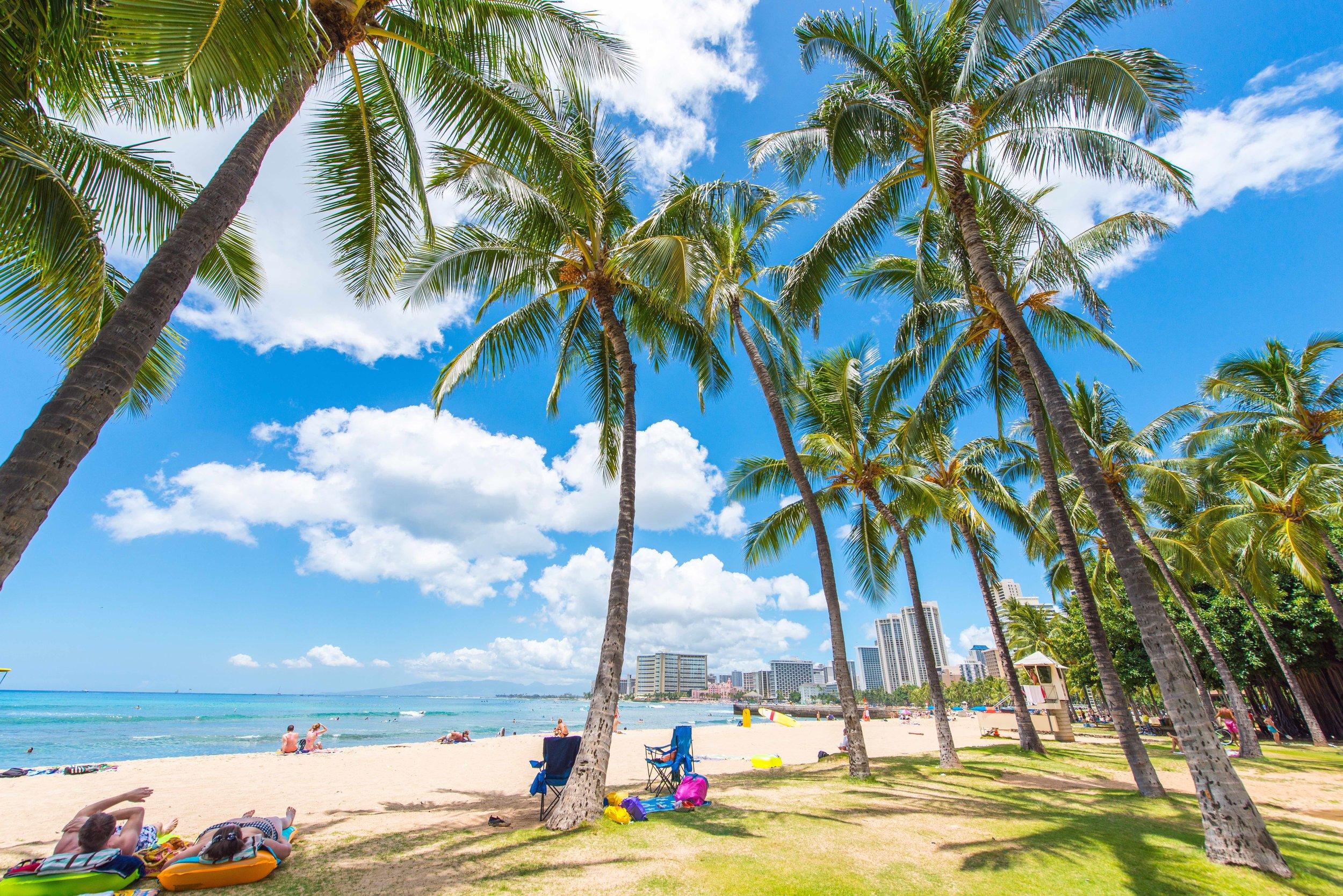 Hawaii beach.jpg