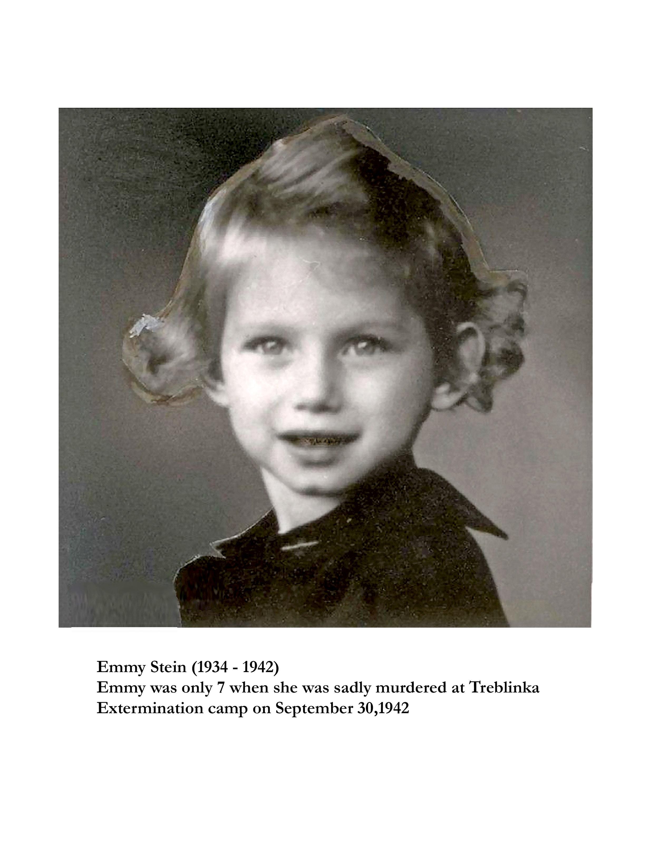 Emmy Stein History