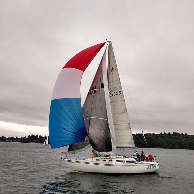 Monday night didn't suck! I was tailing the jib in last night's Ballard Cup race. With heavy wind I was less excited to personally fly the spinnaker, but still had such a fun night out with friends! We even managed to dodge the rain! See that white jacket with the neon yellow? 👋 #hellyhansen #feelalive
