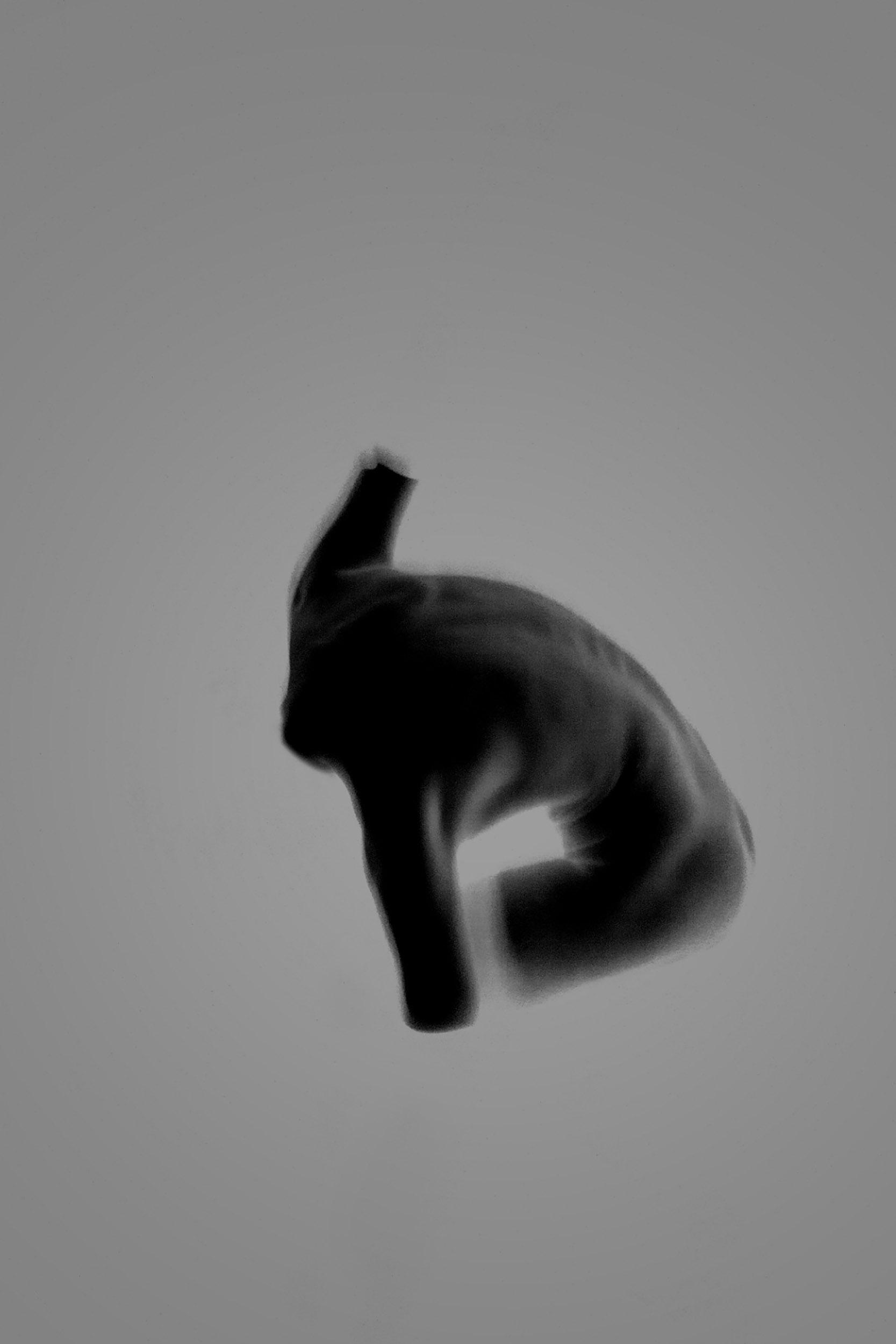 hodosy_invisible-you-honlap-9-2.jpg