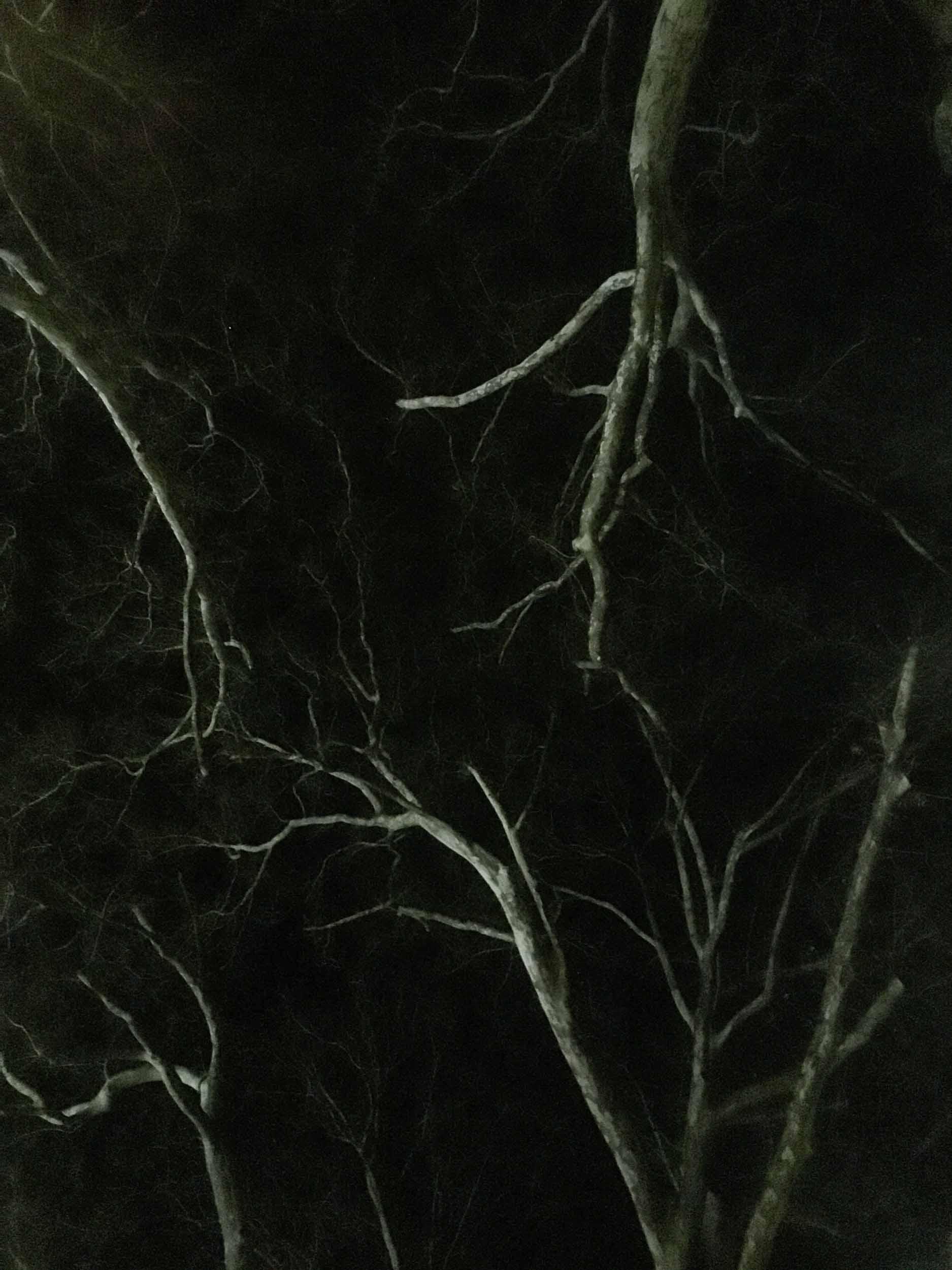 hodosy_invisible-you-honlap-9.jpg