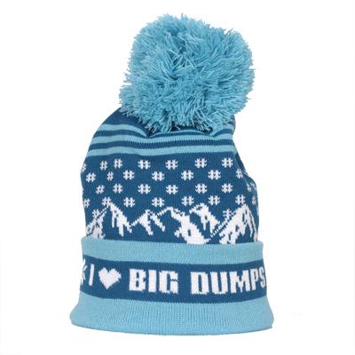 7263-I-Heart-Big-Dumps-Beanie.jpg