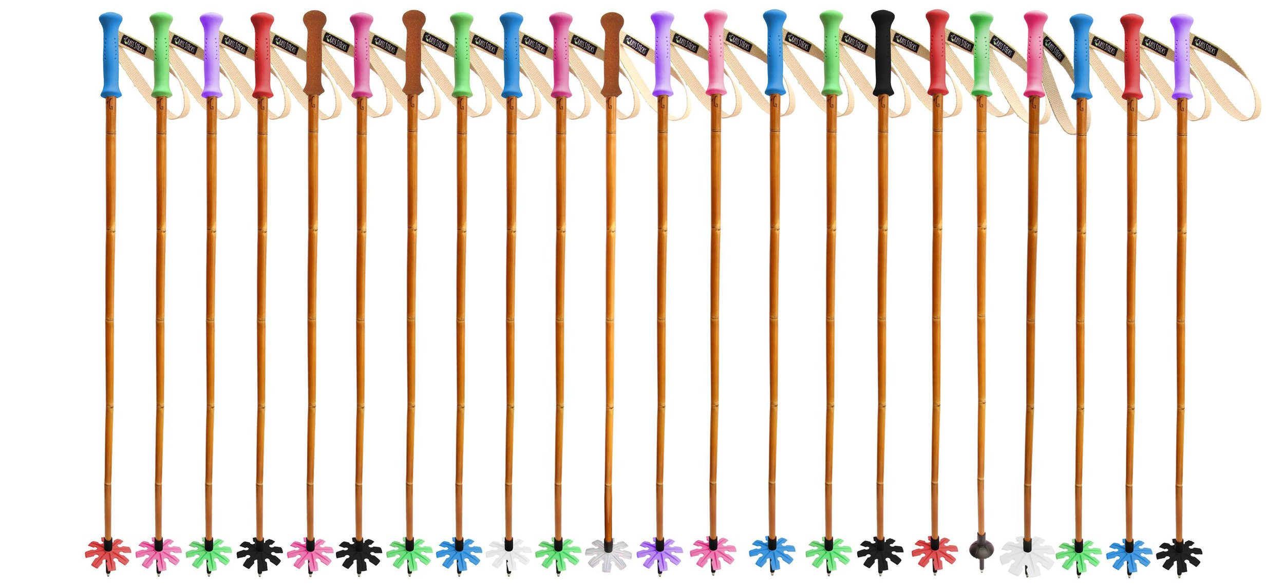 Grass Sticks Ski Poles