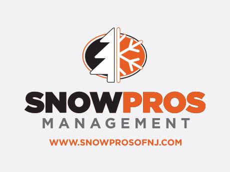 snow-pro.jpeg