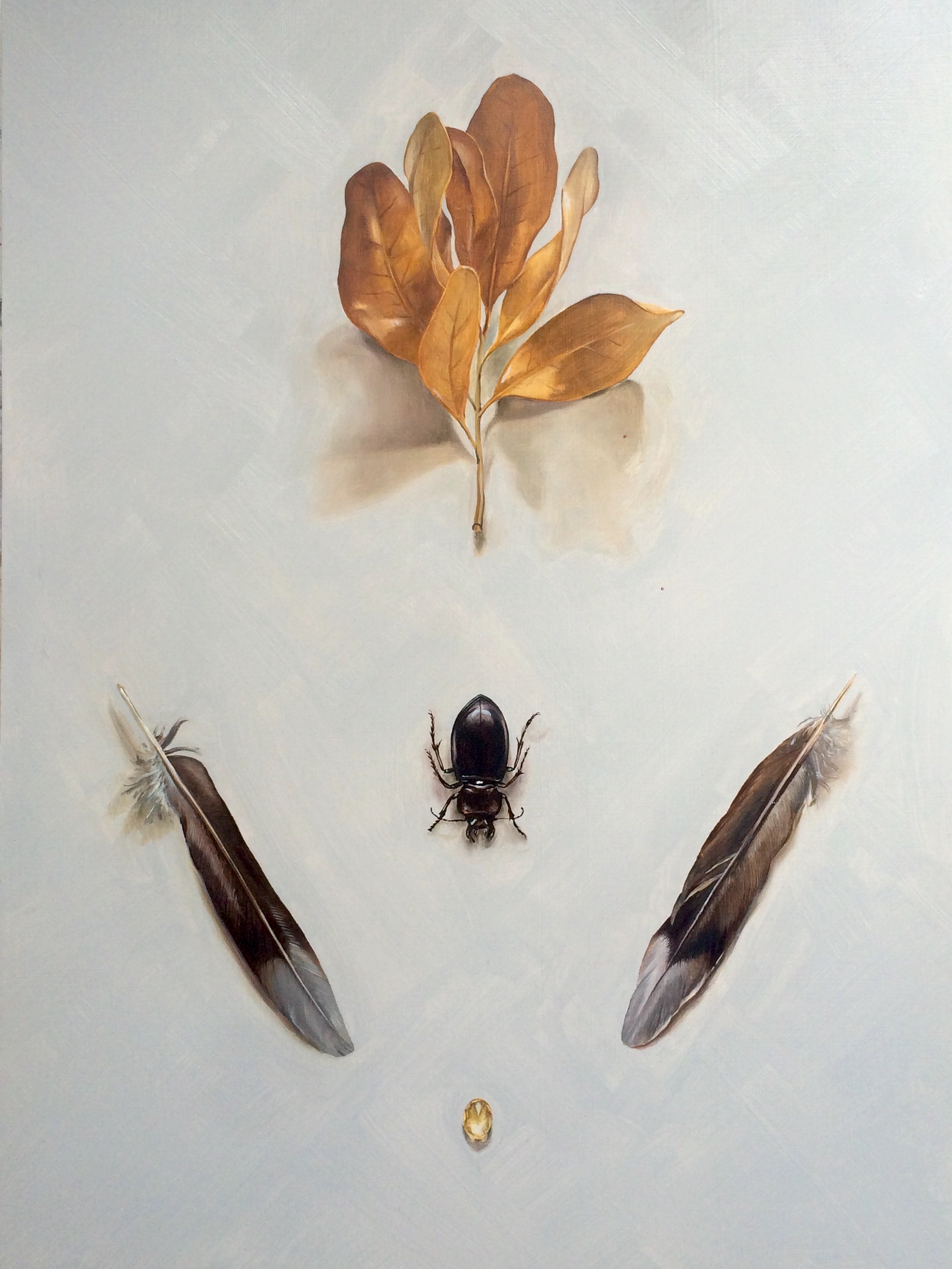Beetle and Leaves