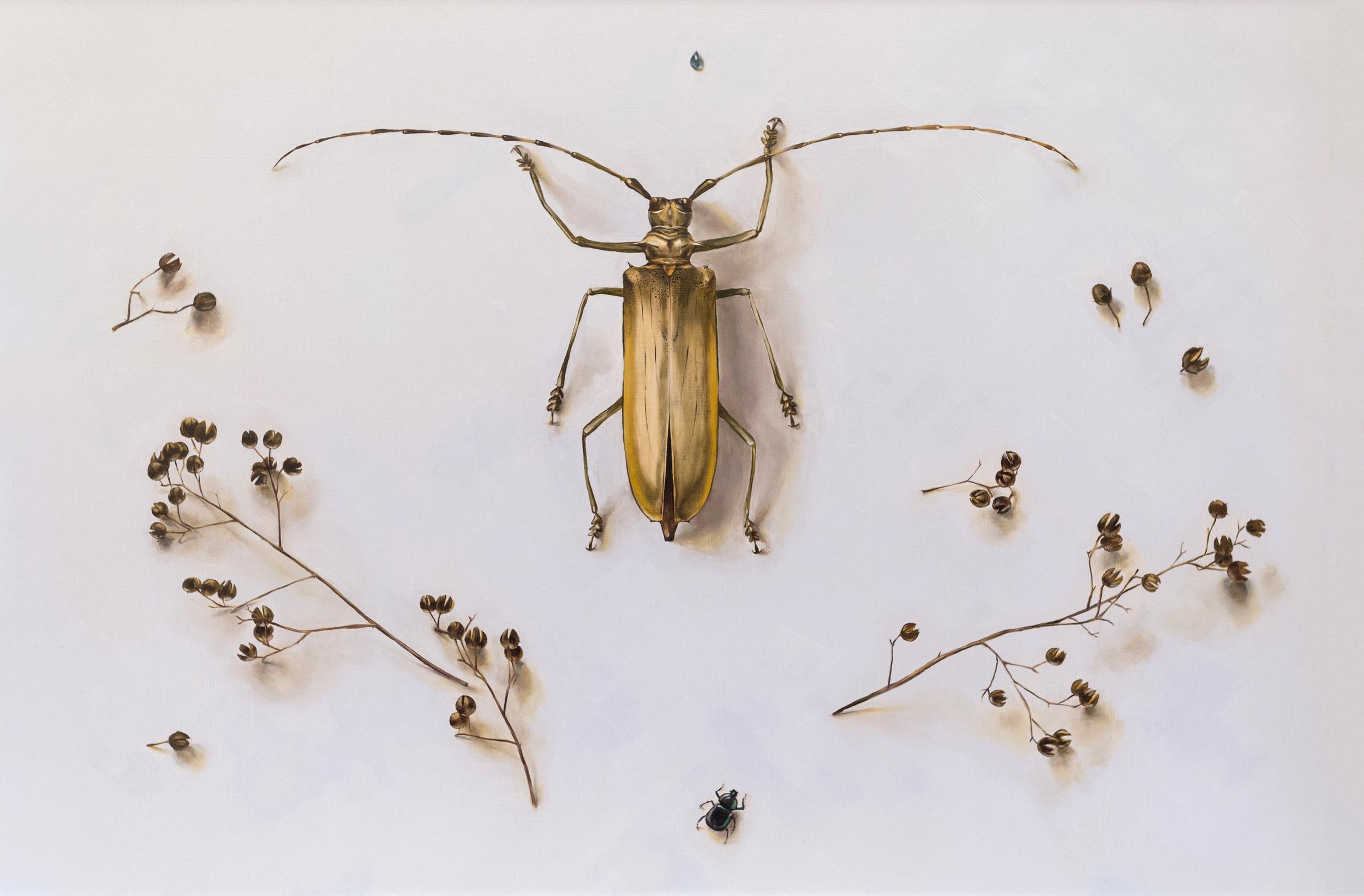 Askew / Longhorn Beetle in Periwinkle