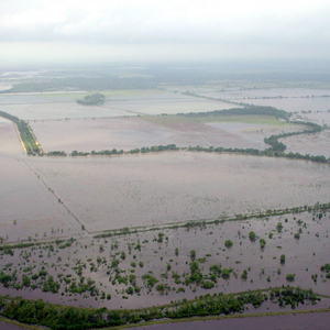 Katy Prairie absorbing floodwaters  Photo by Restoration Systems
