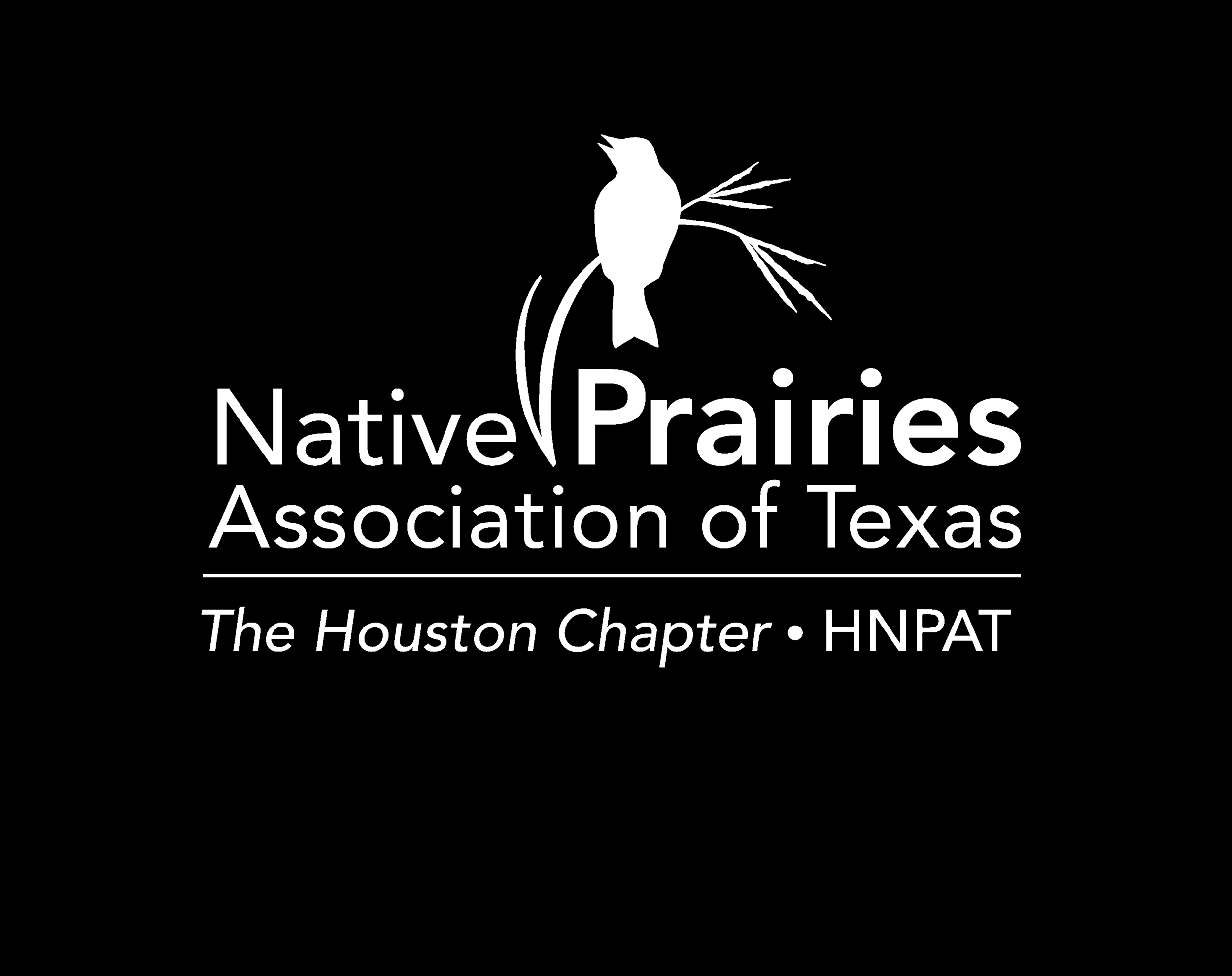 A group dedicated to restoring, teaching, learning, and enjoying Houston prairies, especially the Lawther-Deer Park Prairie.