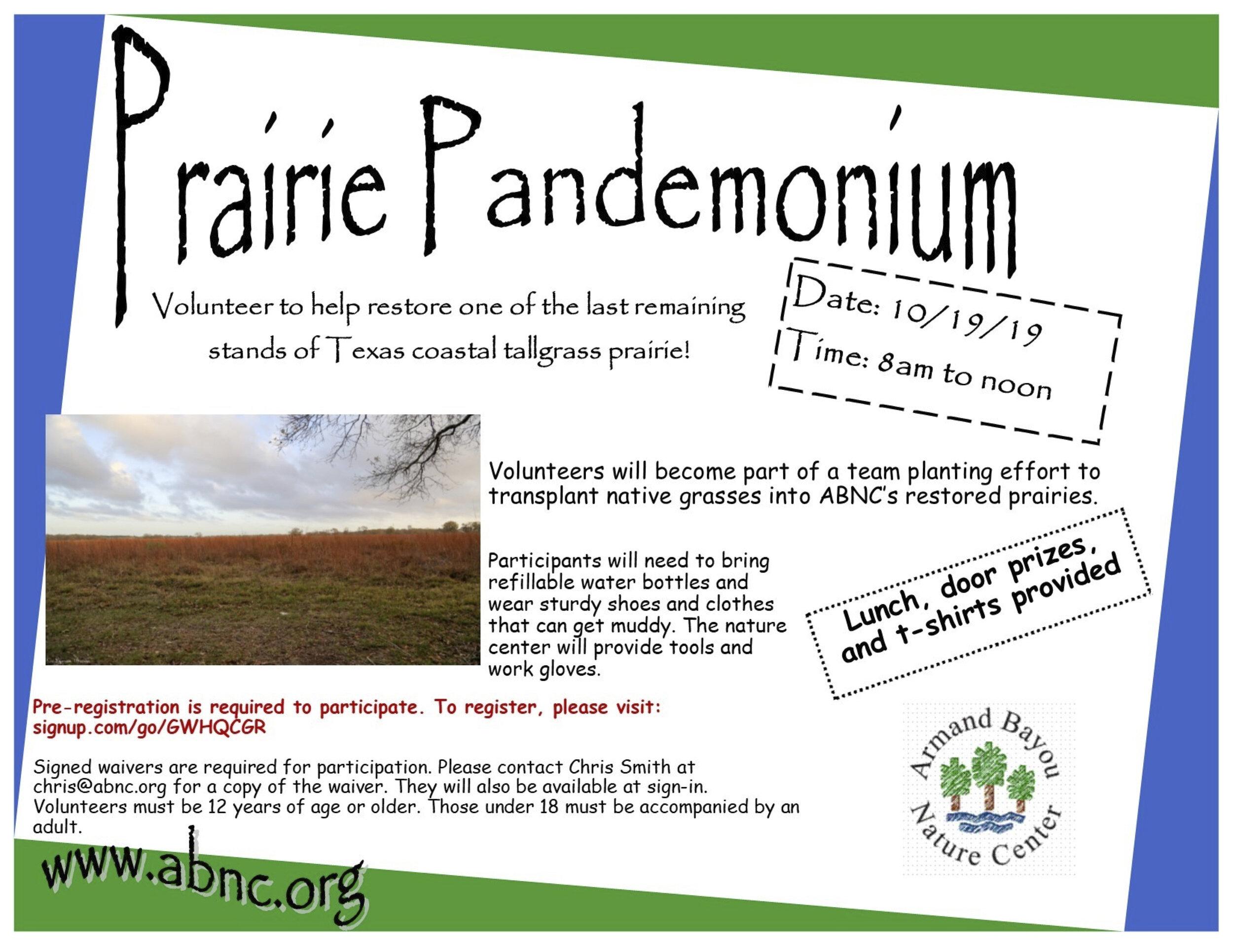 Prairie+Pandemonium+Flyer.jpg