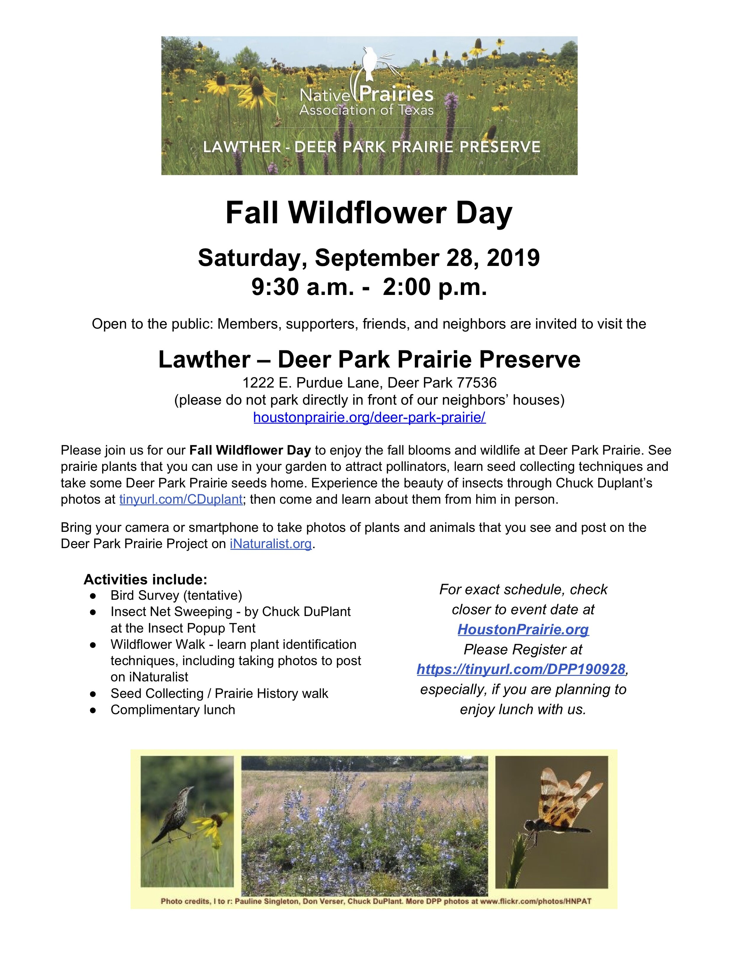 fall-wildflower-day-190928.jpg