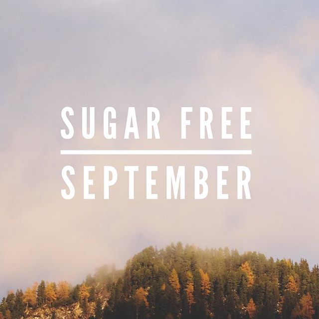Sugar free September, anyone? Join us in challenging our sugar habits together and gaining control of our cravings BEFORE the holiday season starts! Classes start September 13, sign up online. Tag your friends & family below who should join you and support you in Sugar free September!