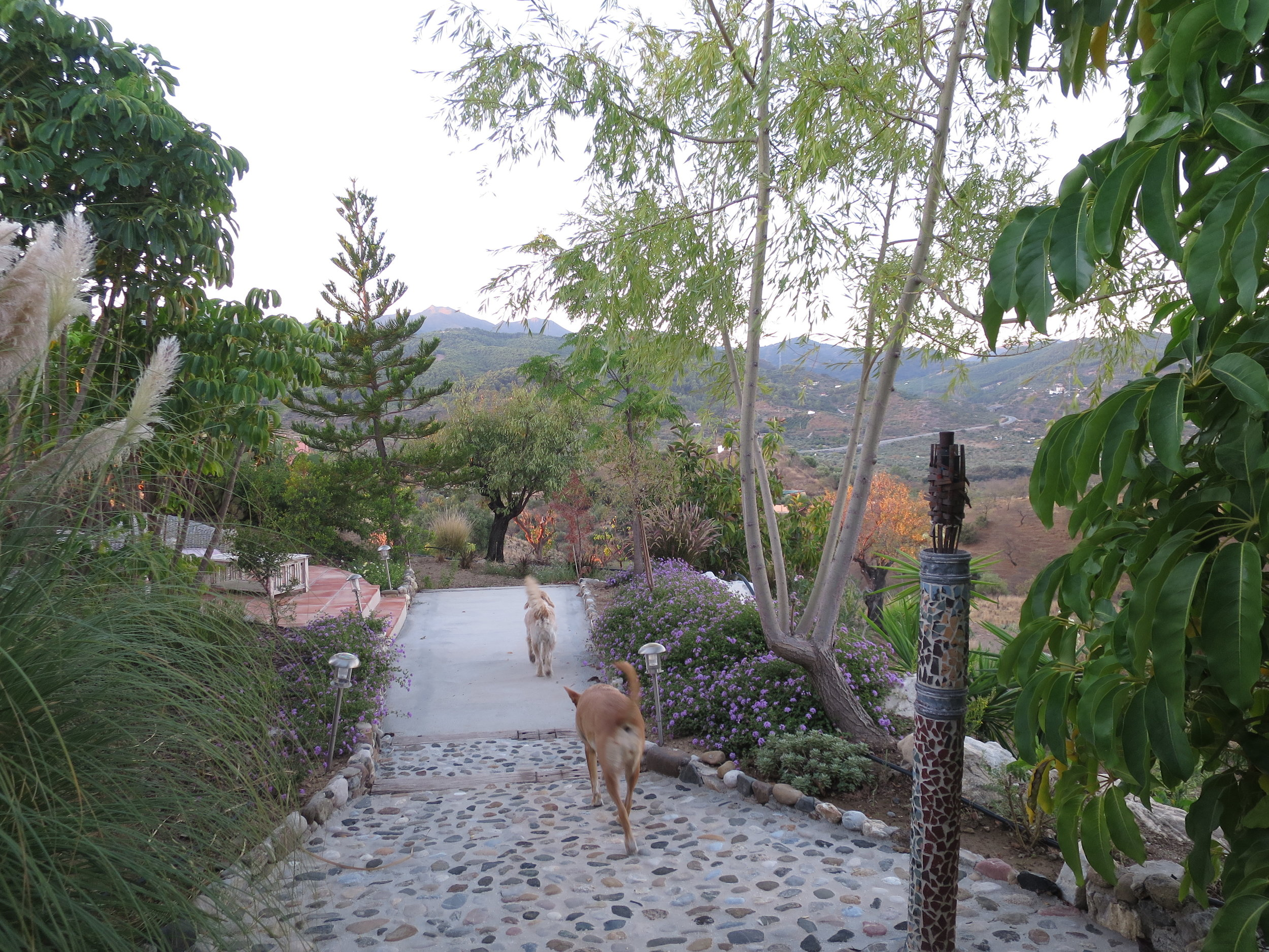 Yoga Retreat Spain 4.JPG