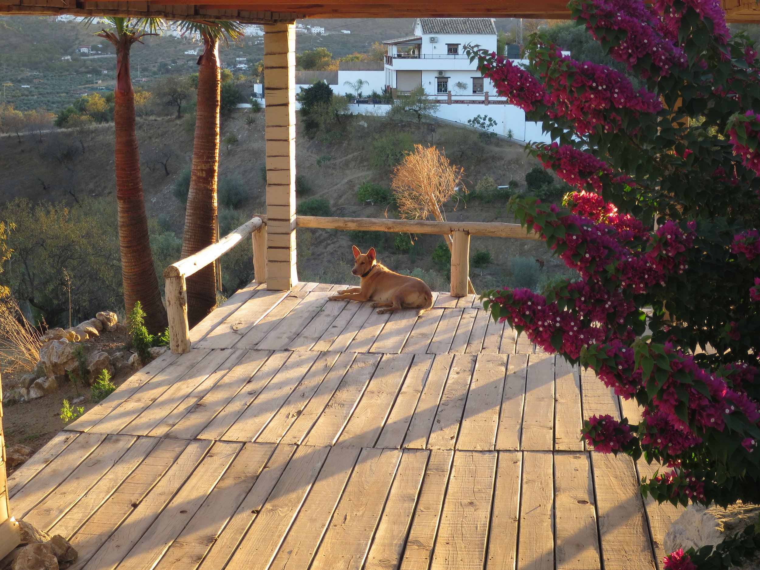 Yoga Retreat Spain 33.JPG