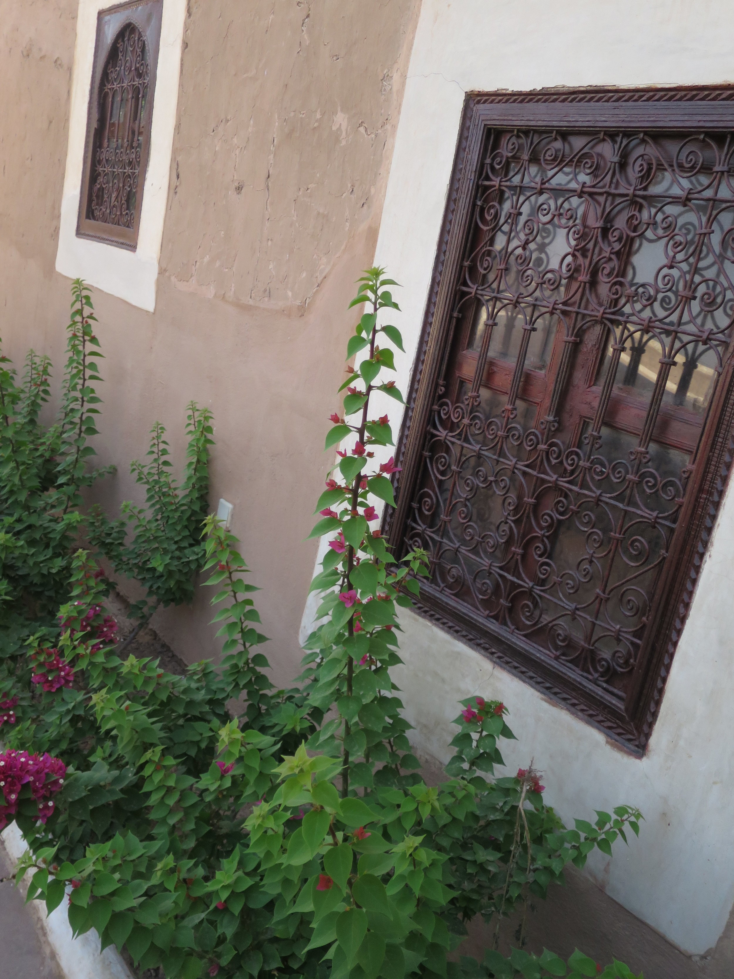 Yoga Retreat Marrakech 54.JPG
