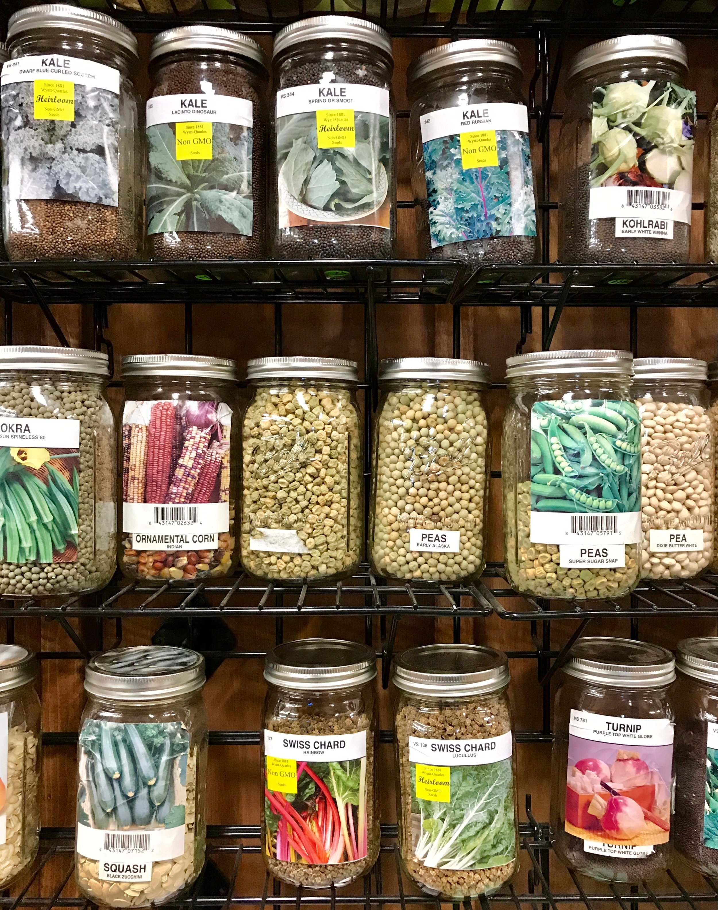Seeds for sale at Barnes Supply Co.