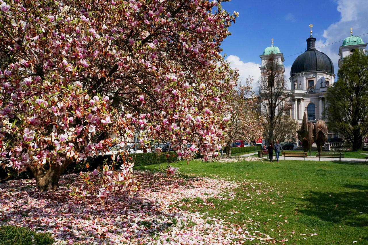 Salzburg in Spring