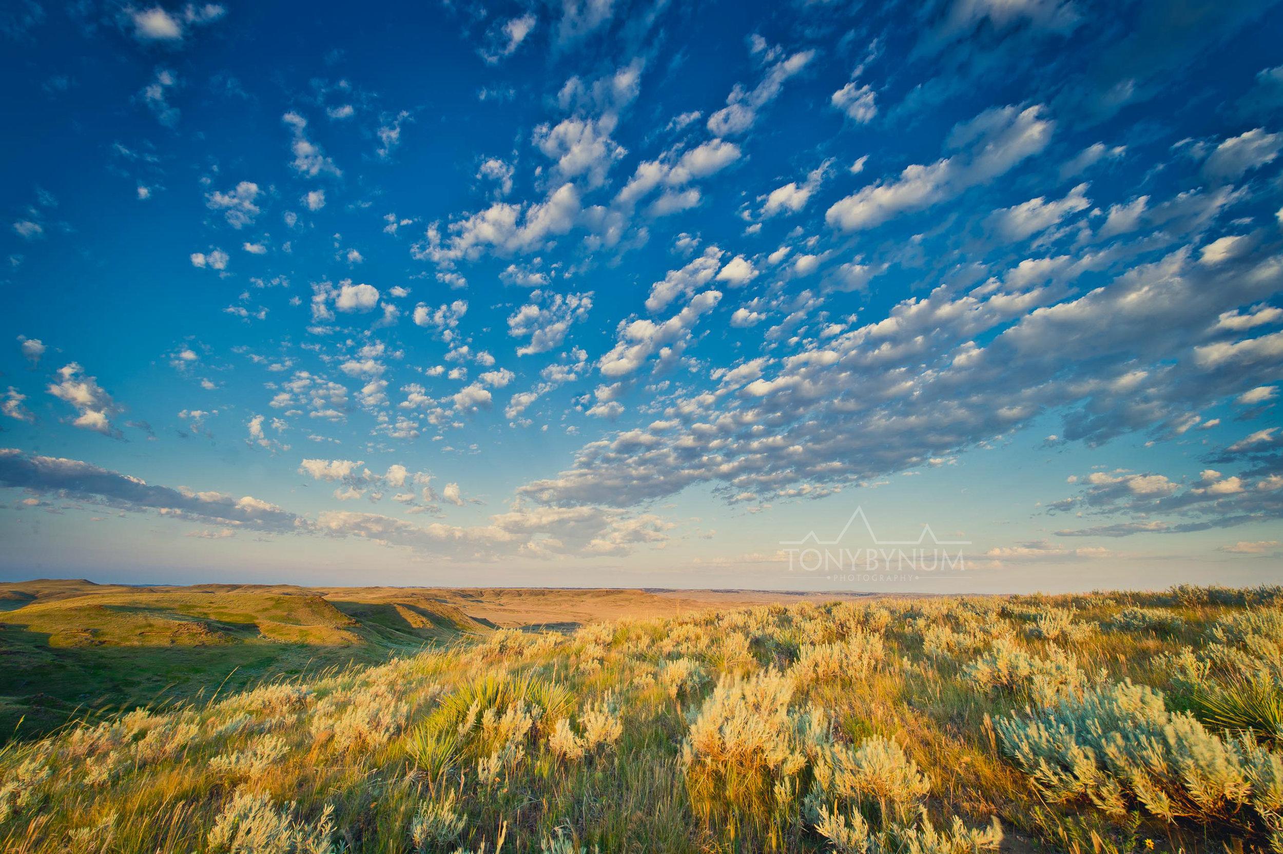 Big Sky Prairies Montana
