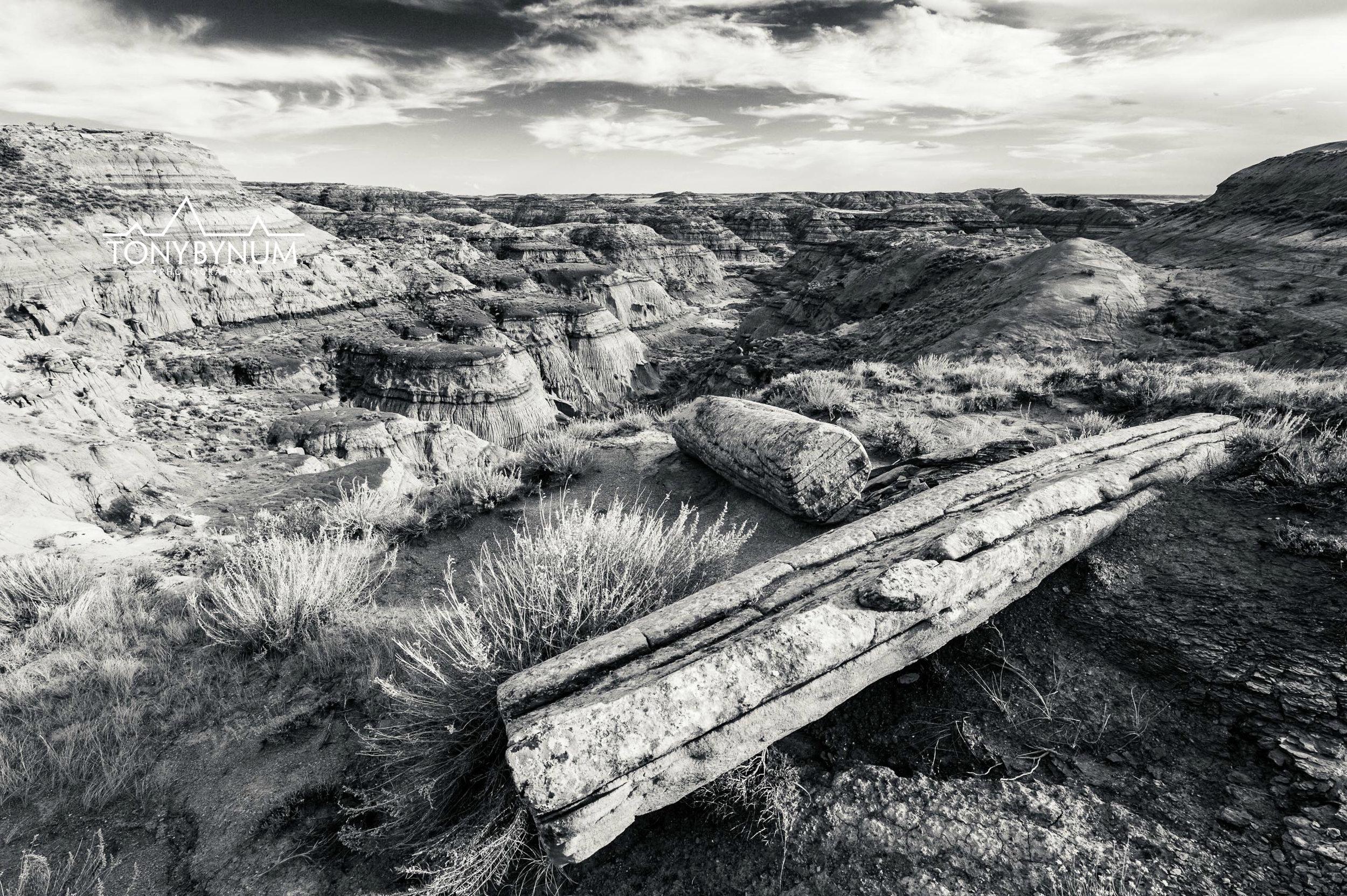 Chromatic Badland Prairie in Montana