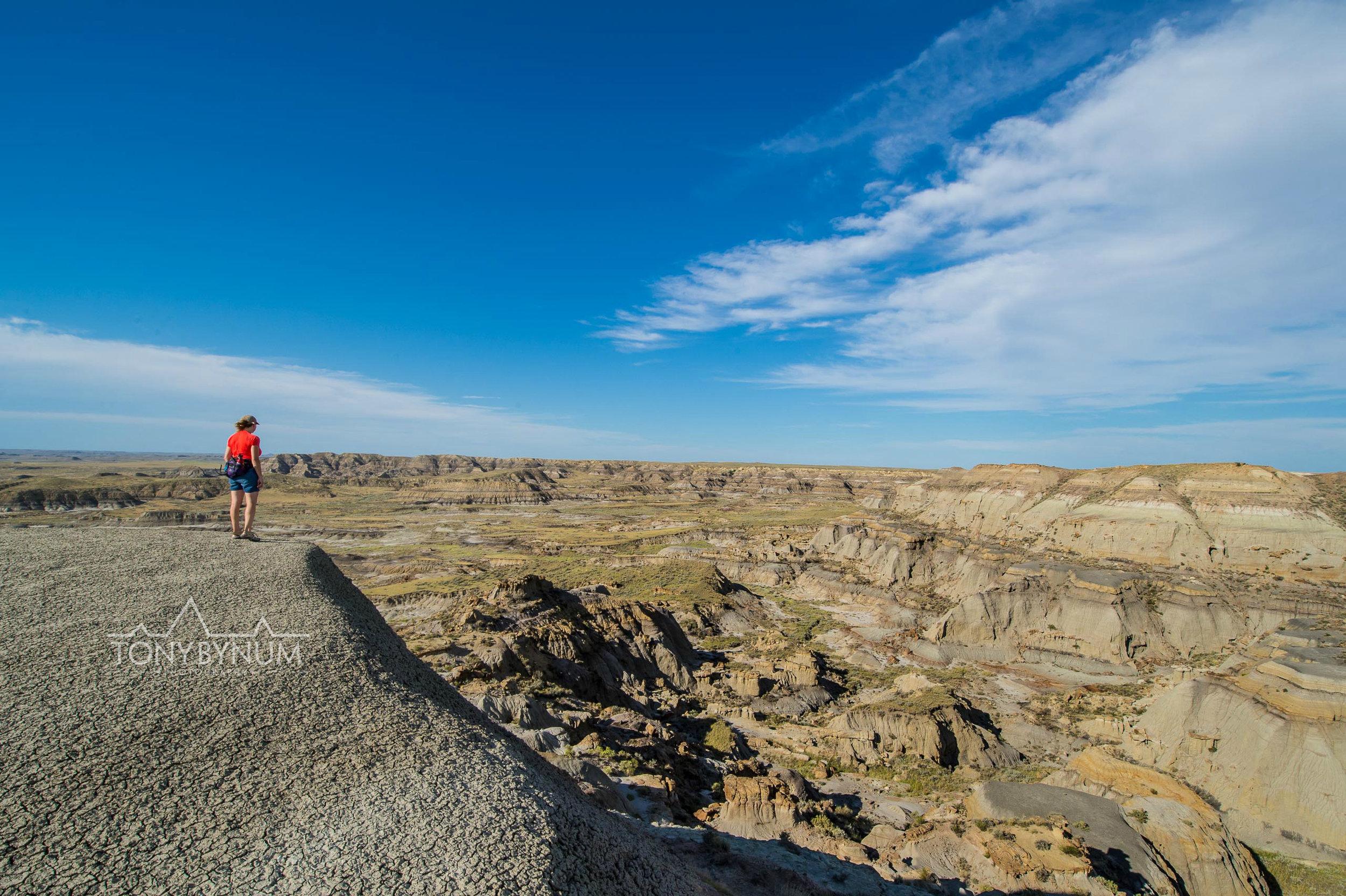 montana prairie view
