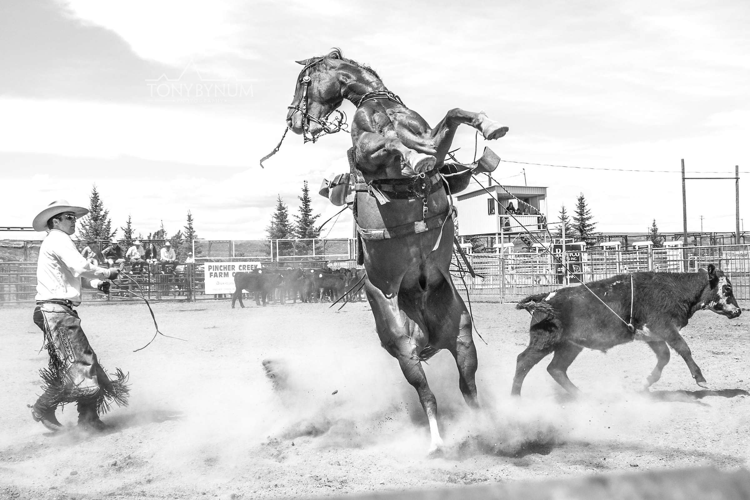 cowboys_bynum-6070.jpg