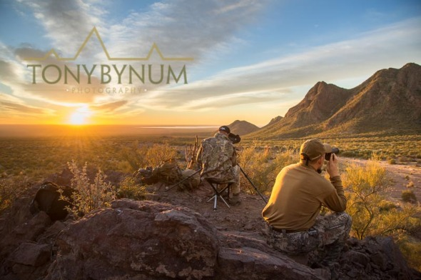Hunting desert sheep in Sonora Mexico