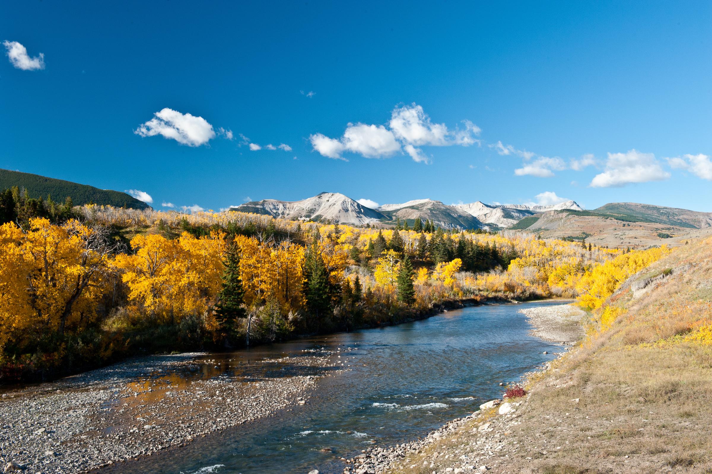 Birch Creek along the Rocky Mountain Front, Badger Two Medicine area, Blackfeet Indian Reservation, Montana