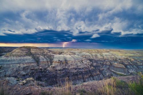 images of wild prairies
