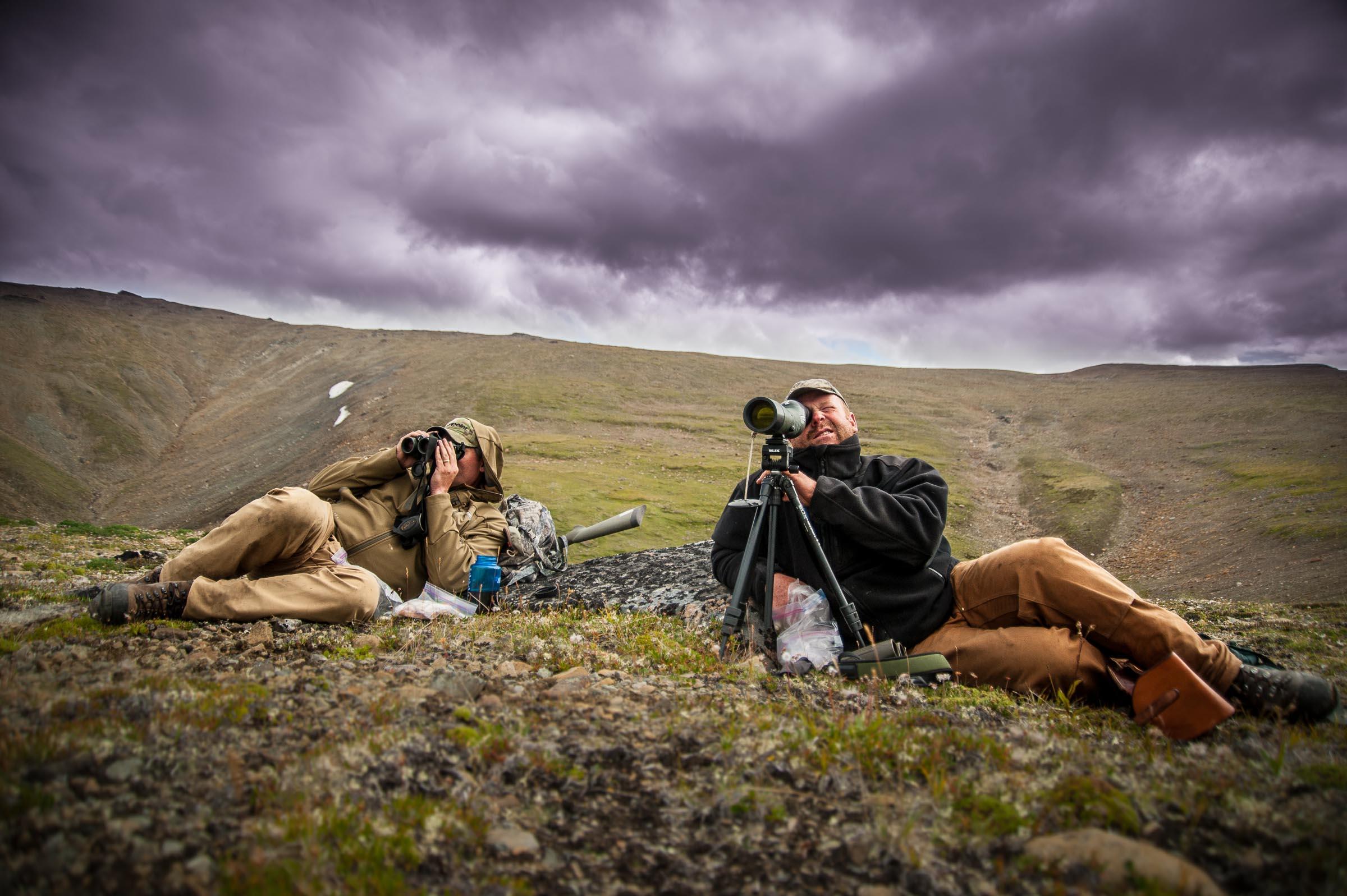 Dall sheep hunting with Swarovski Optics, in Northern British Columbia, Canada. © Tony Bynum