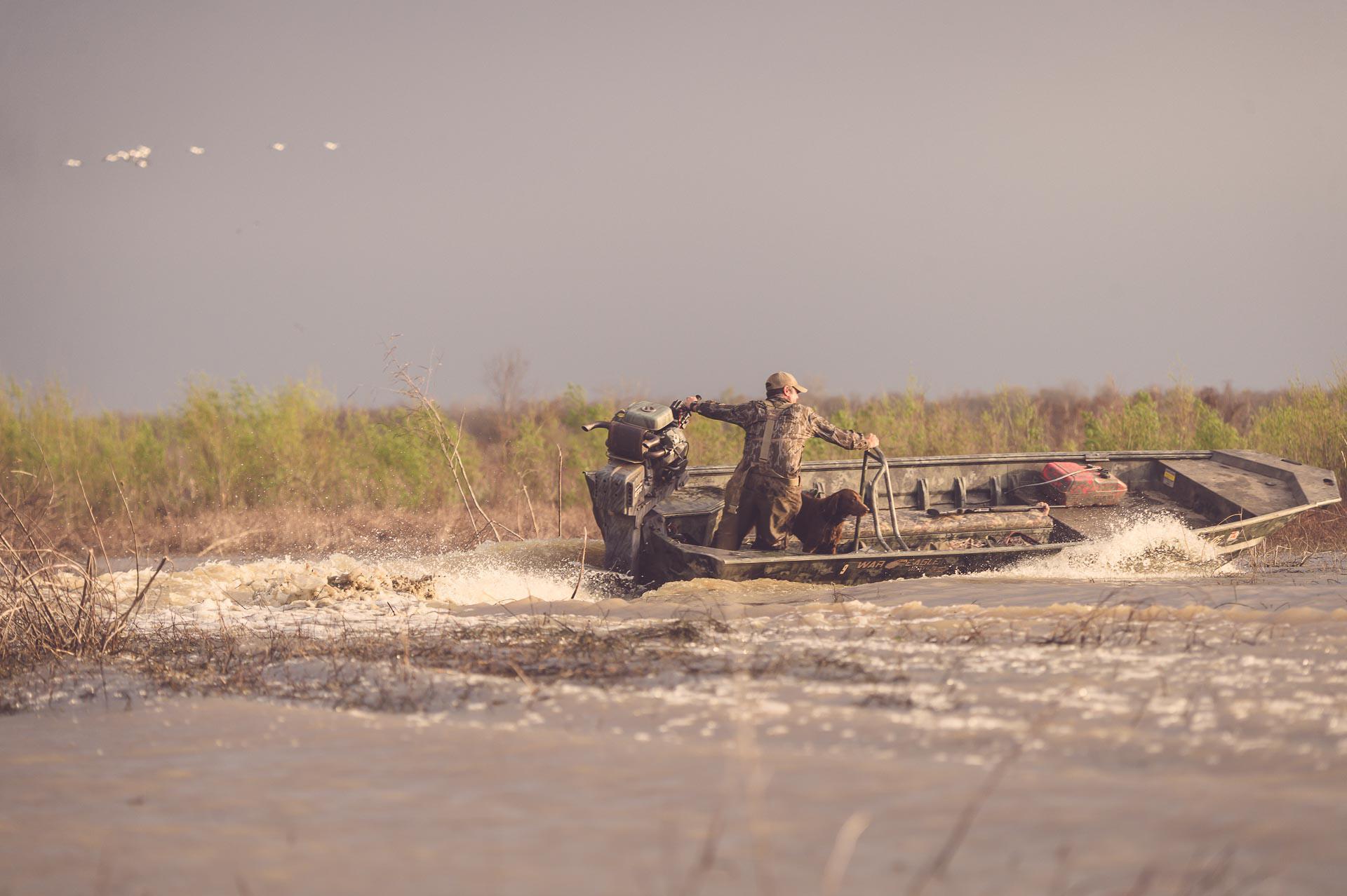 Duck hunter drives boat in marsh. © Tony Bynum