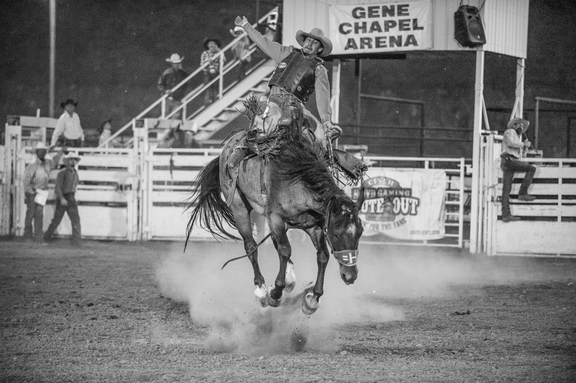 Saddle Bronc rider © Tony Bynum