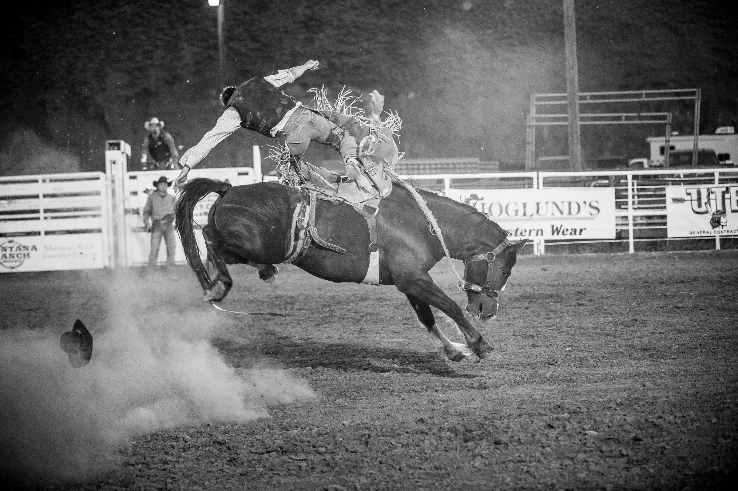 Saddle bronc rider getting thrown from horse. © Tony Bynum