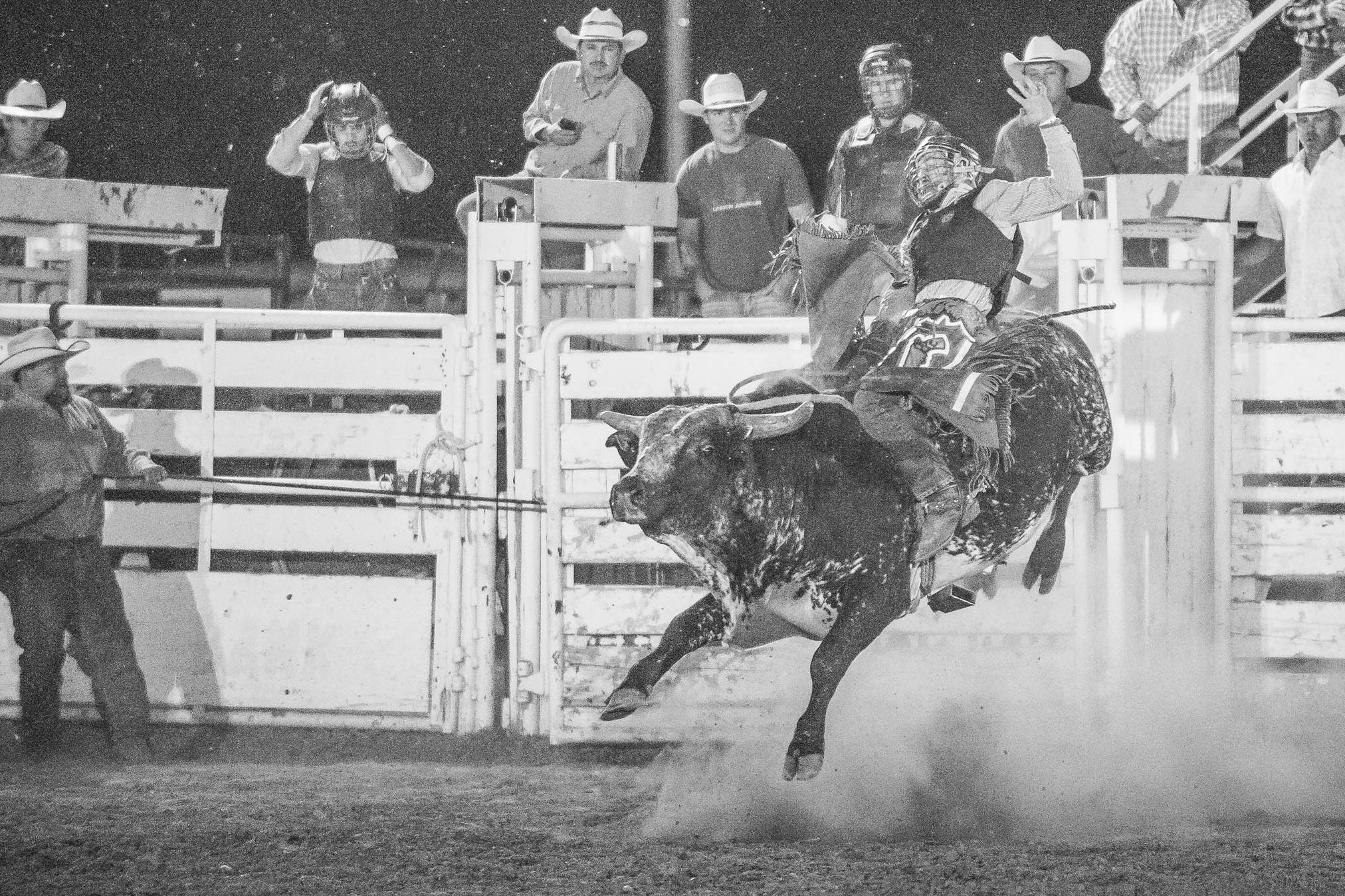 Bull Rider. © Tony Bynum