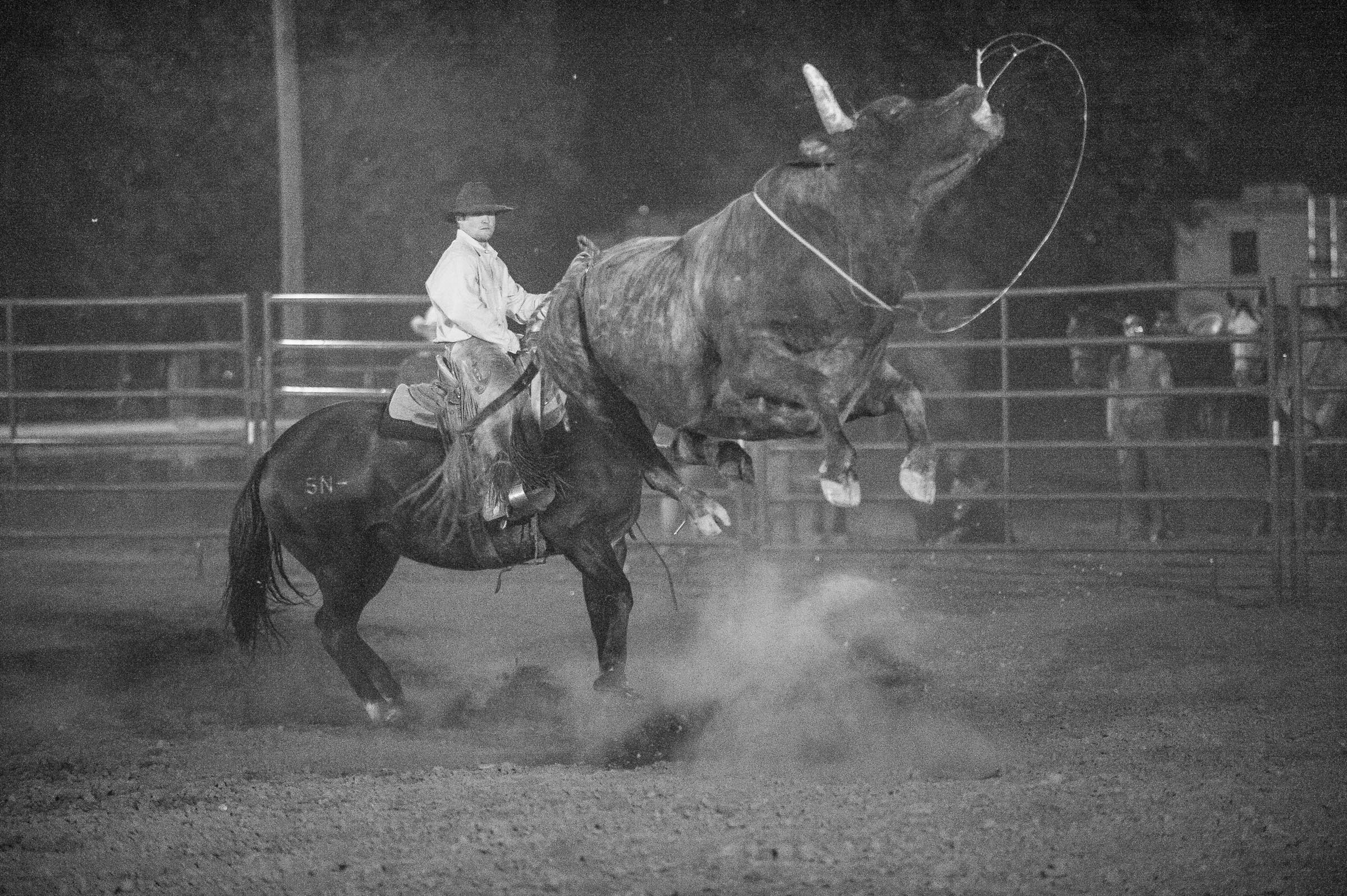 Pickup Man roping a bull © Tony Bynum