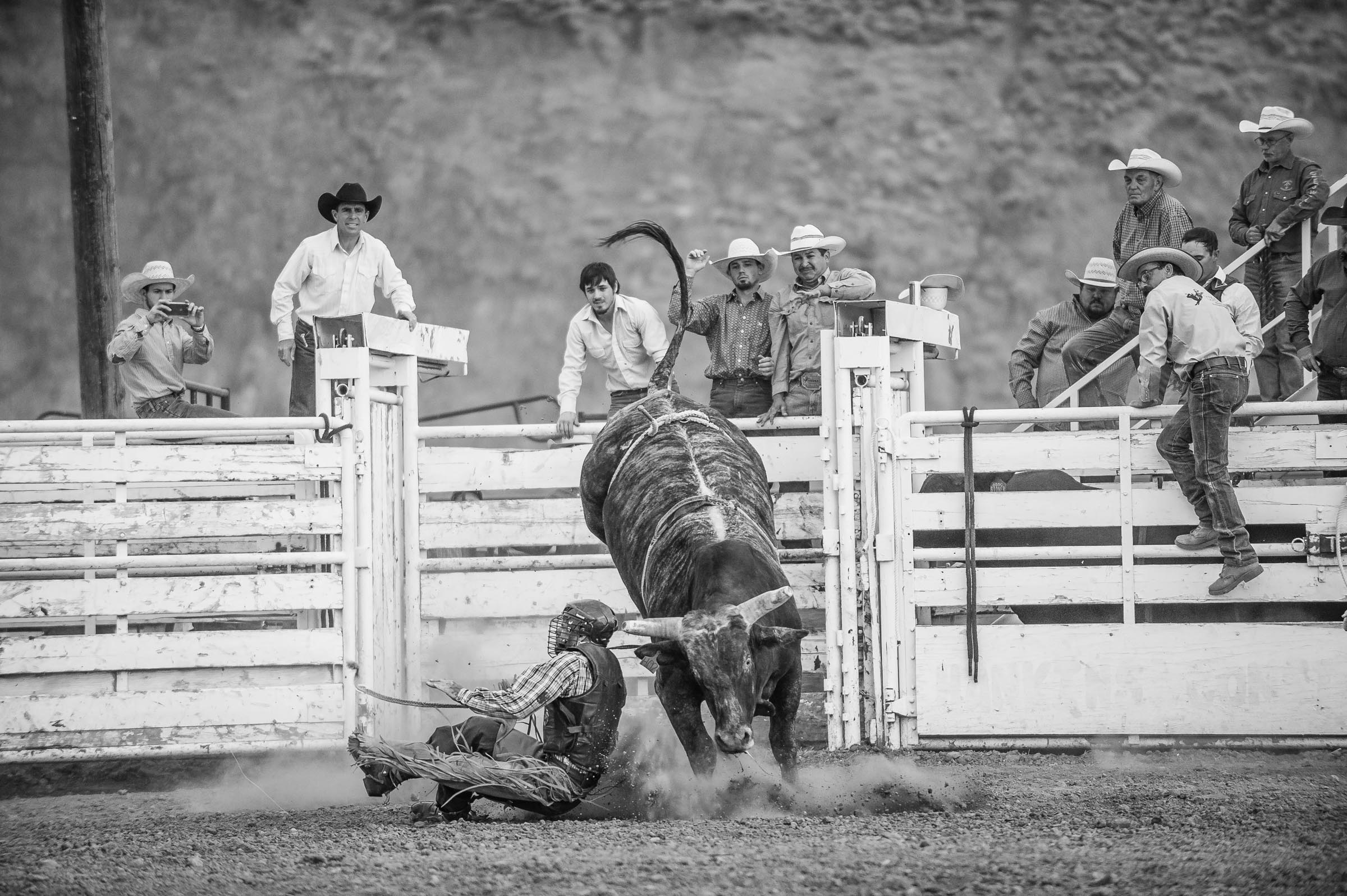 rodeo_whisky-bent_bynum-2618.JPG