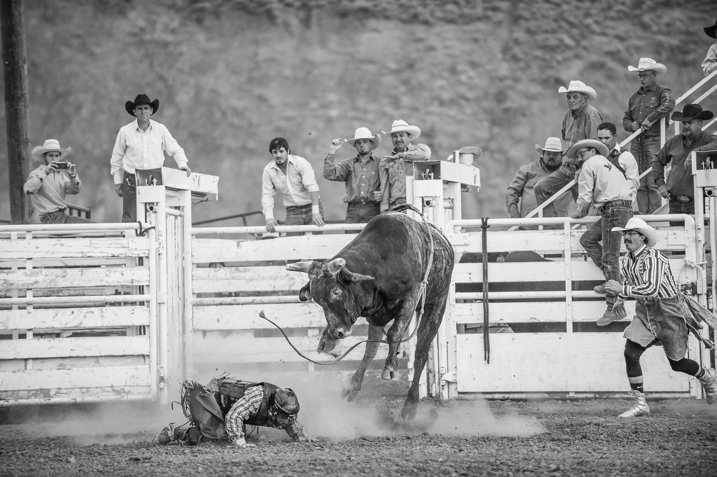 rodeo_whisky-bent_bynum-2622.JPG